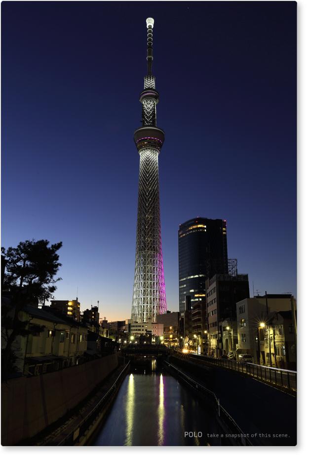 東京スカイツリー 江戸紫