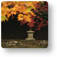 正暦寺の紅葉  >>>本堂へのお参りを済ませて、改めて境内を見渡すと、お堂の横の土手の上に、小さな石仏がひとつ。阿弥陀如来と菩薩様です。 >>>http://camtips.jp/shoryakuji-autumn-leaves/ …