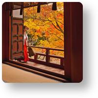 談山神社 拝殿と紅葉_icon