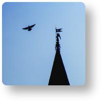 尖塔と鳩_icon