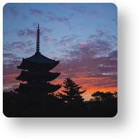 興福寺 五重塔の朝焼け_icon