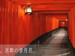 古都_京都の雪月花_タイトル画像_2