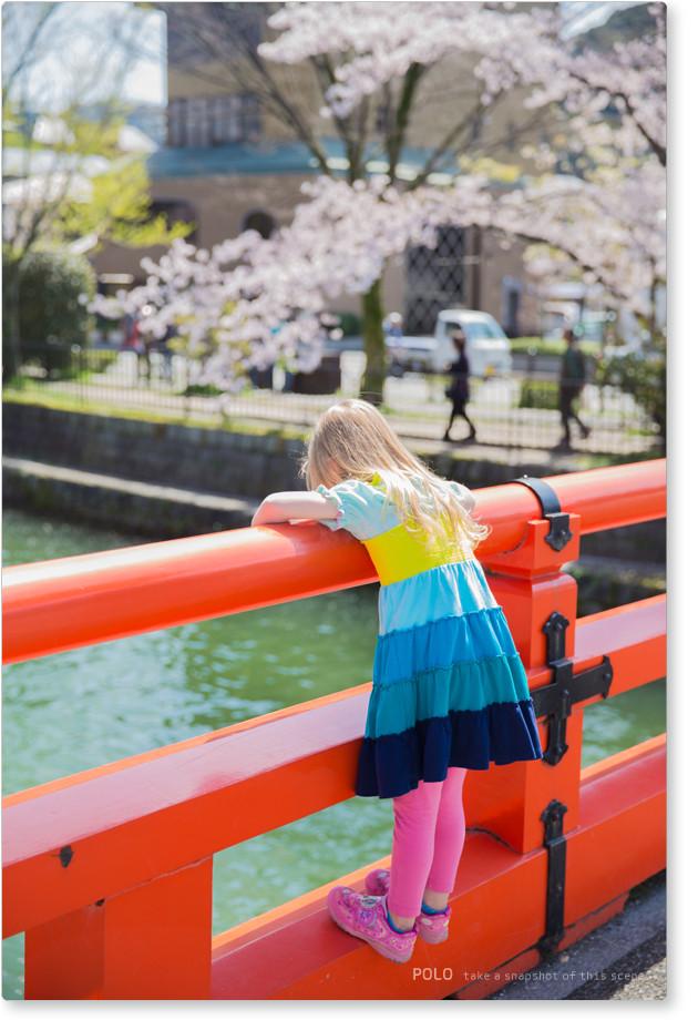 岡崎疎水と少女