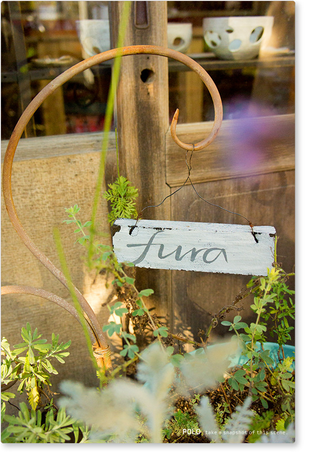 fura_