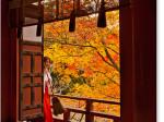 談山神社 拝殿と紅葉