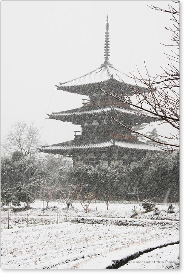 雪の法起寺_1