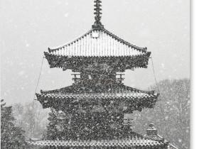 雪の法起寺_3