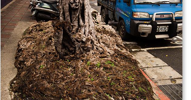 油化街の根
