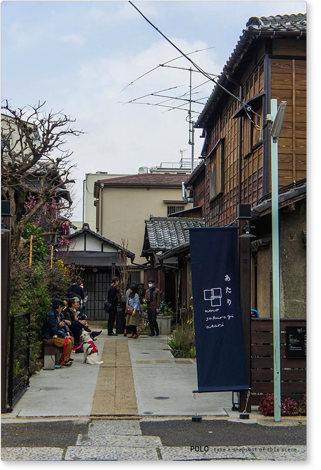上野桜木1